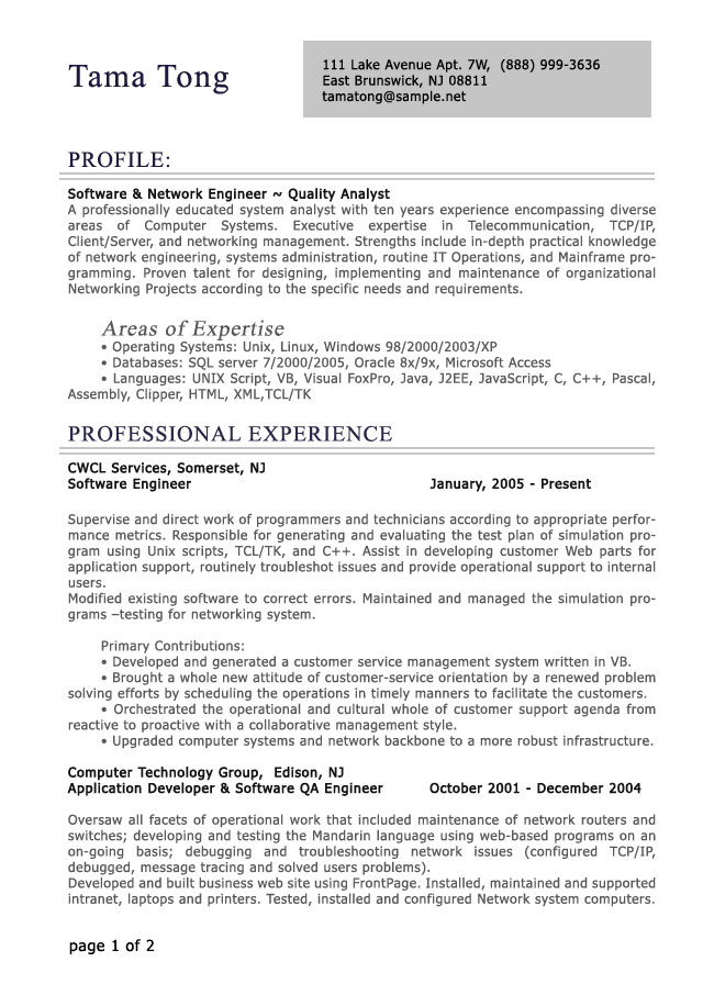 resume example for it professional