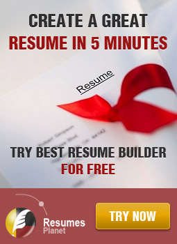 Try Our New Resume Builder